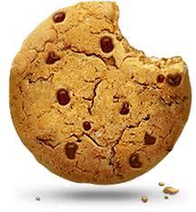 Stenshoppen.dk | Cookies